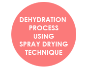 Dehydration Process Using Spray Drying Technique